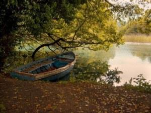 2118931-photo-de-l-39-automne-sur-le-seul-bateau-de-la-banque