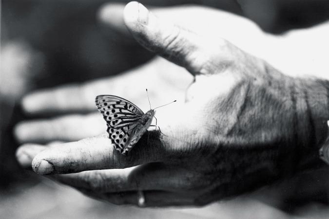 mains-prendre-soin